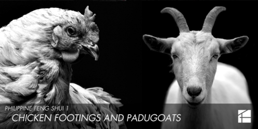 07 - Chicken Footings and Padugoats
